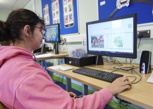 Student accessing computer in IT session