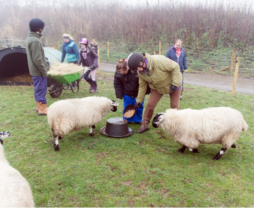 Learners in session at Apperknowle Farm