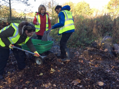 Students doing work experience at a local nature reserve