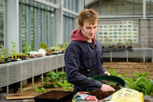 Our students gain hands on employability skills within our 16 acres of listed gardens.