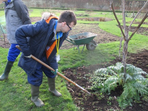 Horticultural Work Experience – Learners enjoy the outdoor life whilst gaining practical skills.